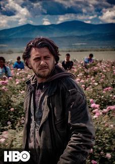Bułgarska róża