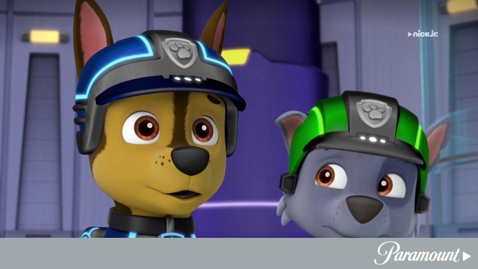 Psi Patrol IV - Odcinek 10